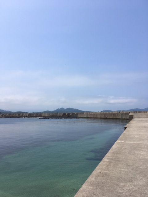 野北 漁港 釣果